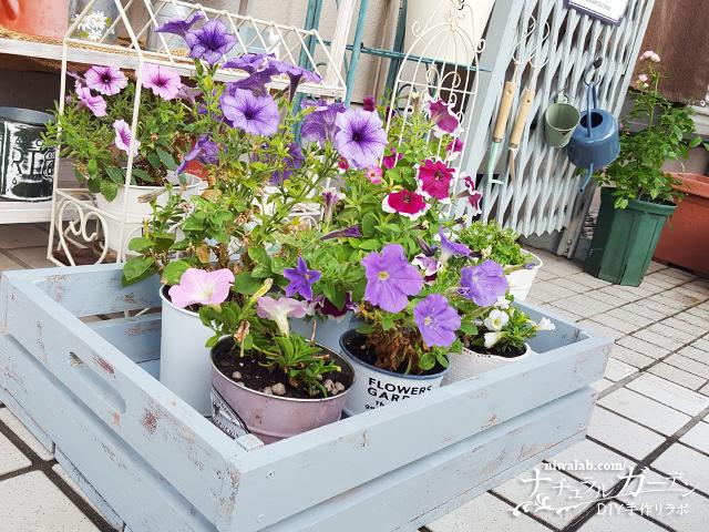 ガーデン雑貨ベジタブルボックス