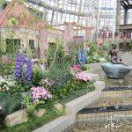 デンマークの町並みと大温室の花 「デンパーク フローラルプレイス」