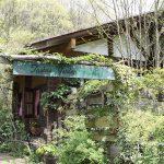 世界中のガーデナーが憧れる庭を再現 「花フェスタ記念公園ターシャの庭」