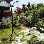現在の庭の様子をまとめました。『チェリーガーデン2018』