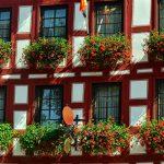 窓辺に飾りたい花No.1!鮮やかなゼラニウムでヨーロッパ風に