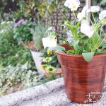100円の鉢が高級な木製に変身!【木目風塗装 Part 2】