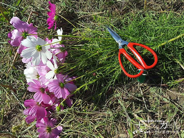 切り花体験