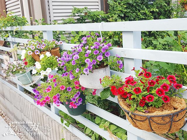ボーダーフェンスと花