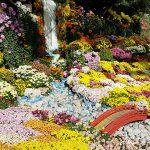 岐阜城を背景に『岐阜公園の美しい秋の景色と菊人形・菊花展』