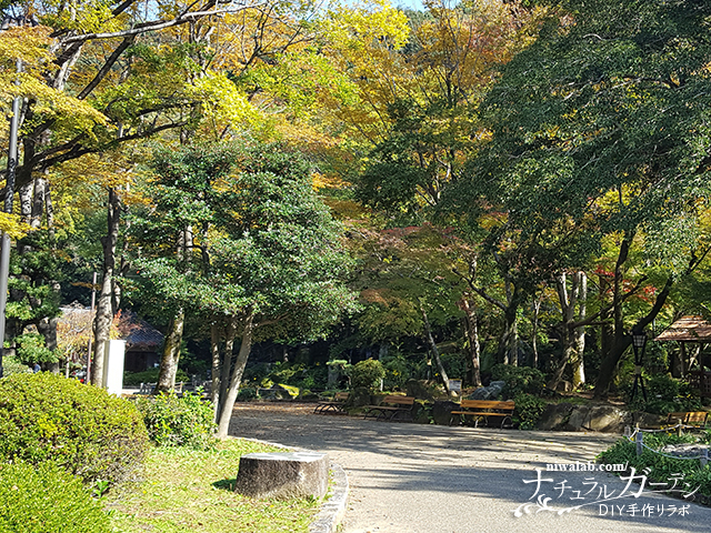 岐阜公園紅葉