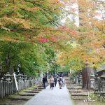 参道の散策も楽しい!歴史あるお寺「谷汲山華厳寺の紅葉」