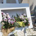1×4木材4枚で作るDIY!花を立体的に飾る額縁プランター