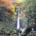 壮大な滝と美しい紅葉のダイナミックな風景「養老の滝の紅葉」