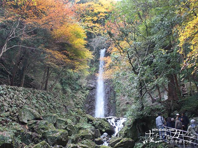 養老の滝の紅葉