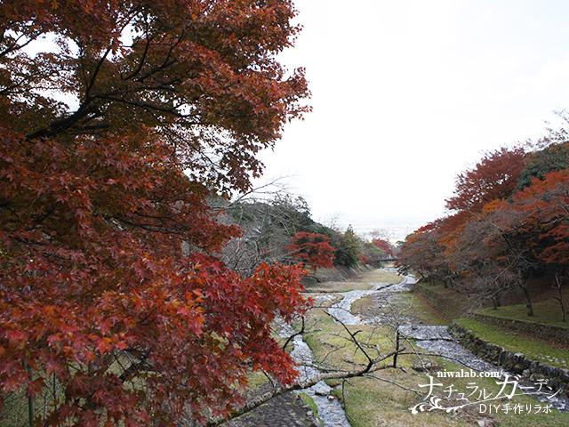 濃尾平野と紅葉