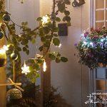 庭や玄関アプローチを、クリスマステイストに飾りつけよう!