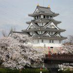 お城をバックに桜を愛でる「墨俣一夜城・犀川(さいかわ)堤の桜」