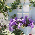 壁やフェンスを開放的に演出!プランター付きフェイク窓の作り方