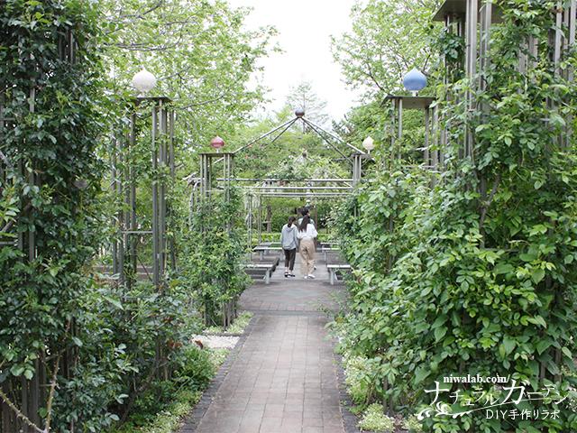 ガーデンパークバラ