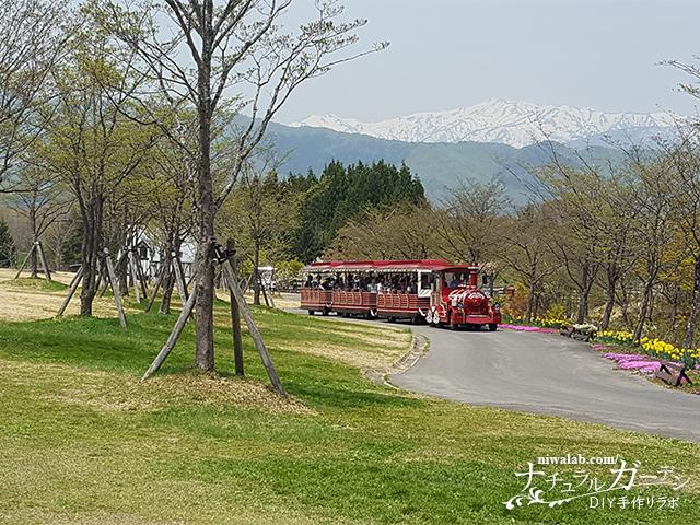 牧歌の里園内バス