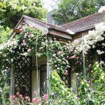 人が幸せになる庭。テーマごとの庭を楽しめる「花遊庭」でバラを堪能!