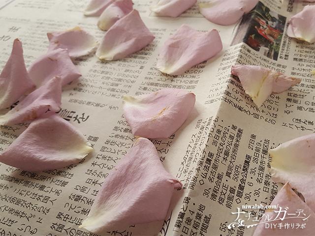 花弁を乾燥