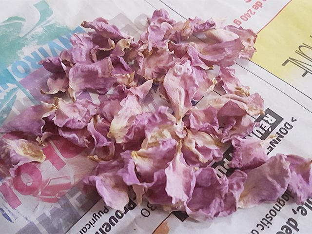 乾燥後の花弁
