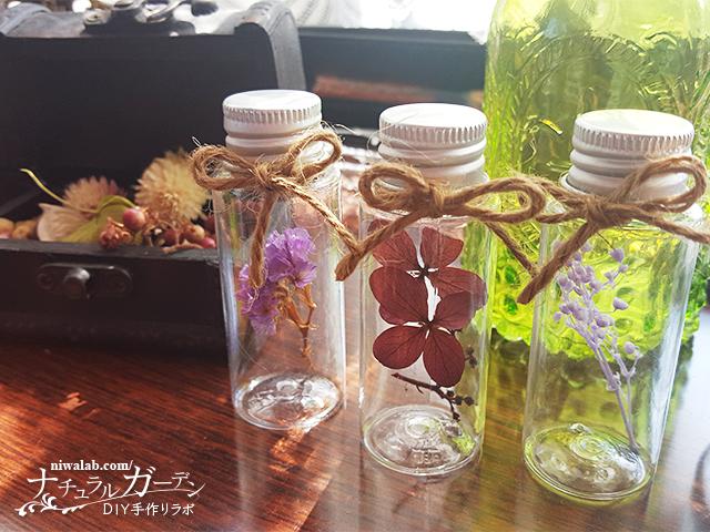 小瓶の植物標本