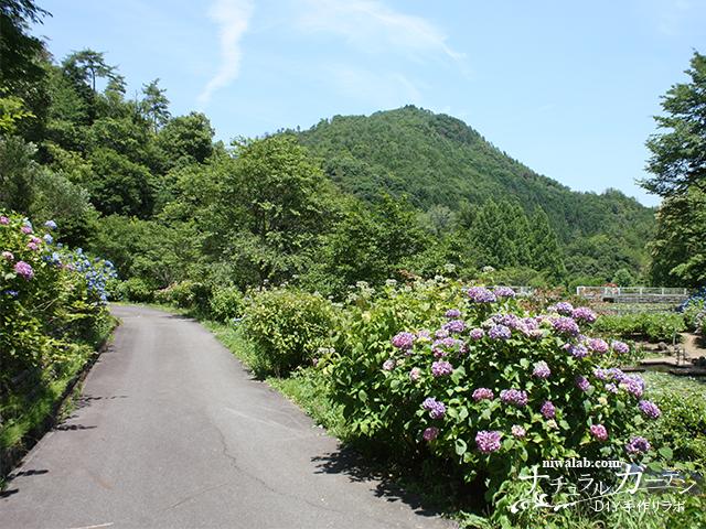 自然の公園