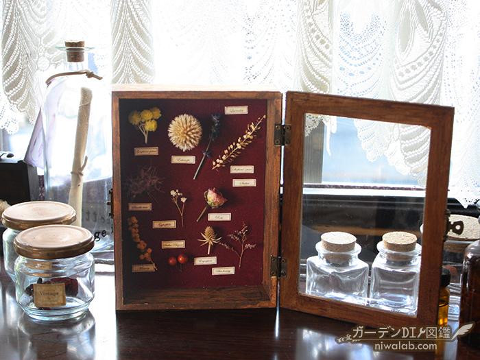 手作り植物標本