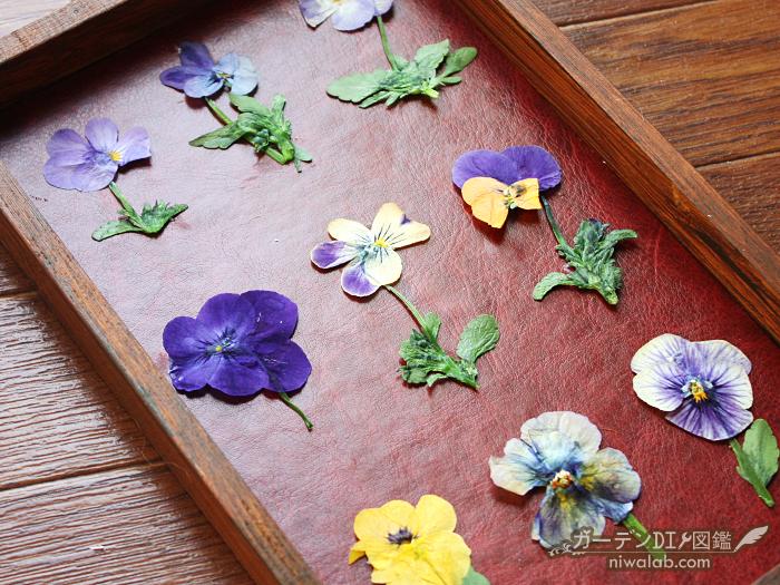 押し花を配置