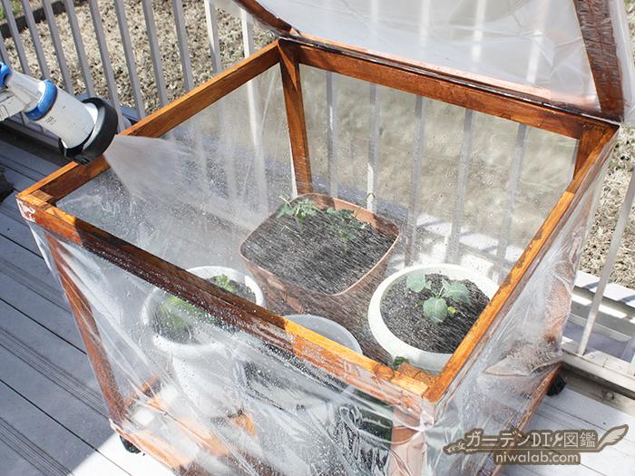 温室で水やり