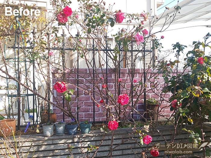 玄関花壇剪定前