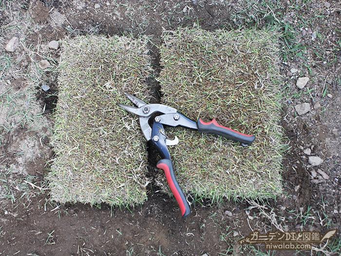 芝生カット