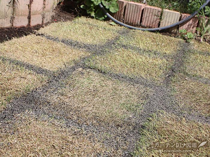 芝生張りDIY