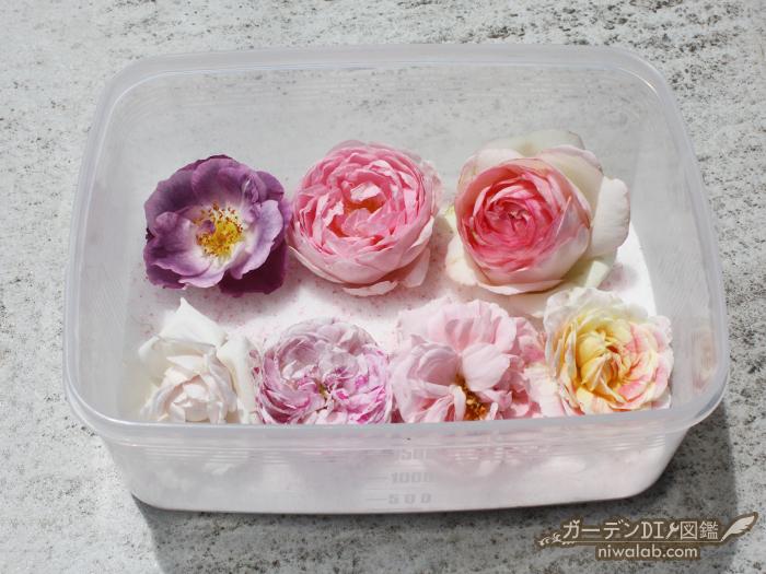 花を並べる