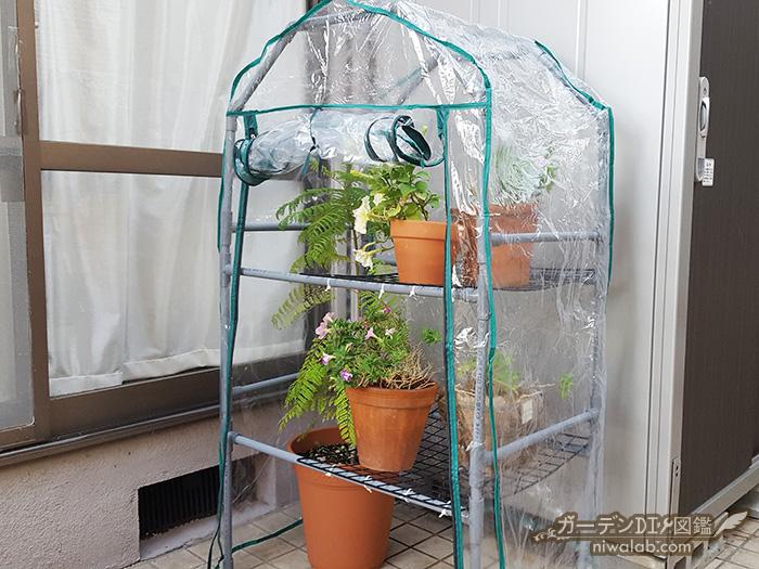 手作り温室